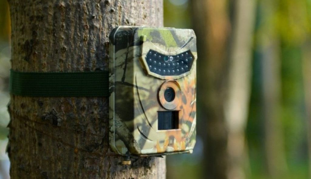 Comment utiliser une caméra de chasse ?